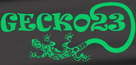 sconosciuti special night gecko23 via brembo milano