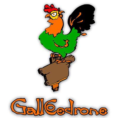 cena degli sconosciuti roma gallo cedrone
